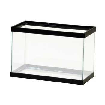 How to choose a betta bowl aquarium tidings for Fish for 2 5 gallon tank