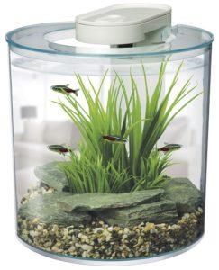 marina 360 aquarium