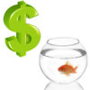 How to Make Money Breeding Fish